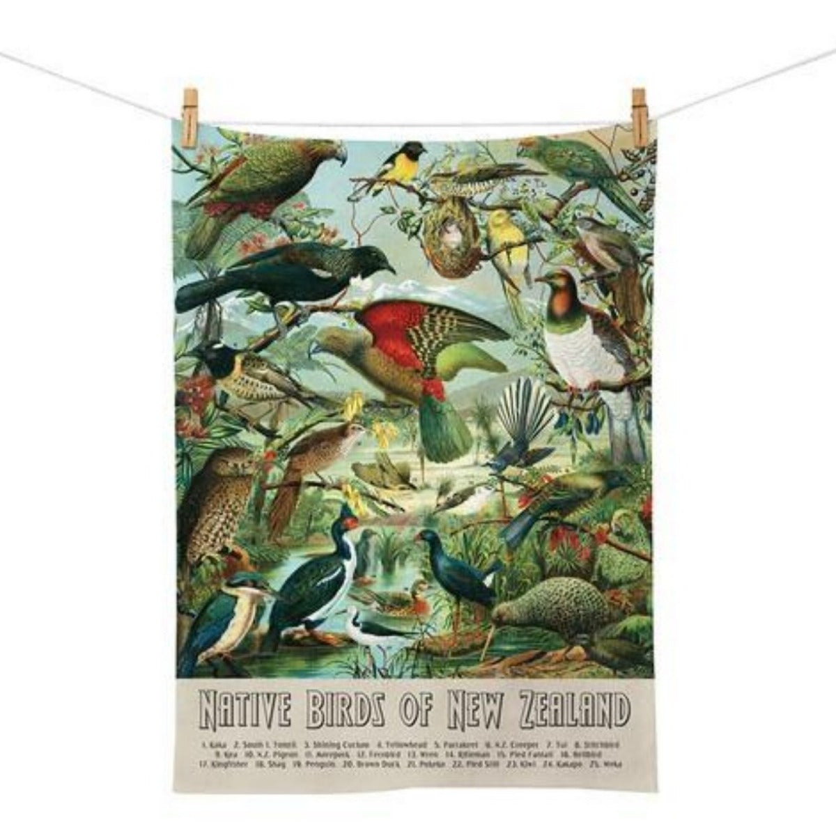 jade kiwi kaikoura gifts native bird tea towel