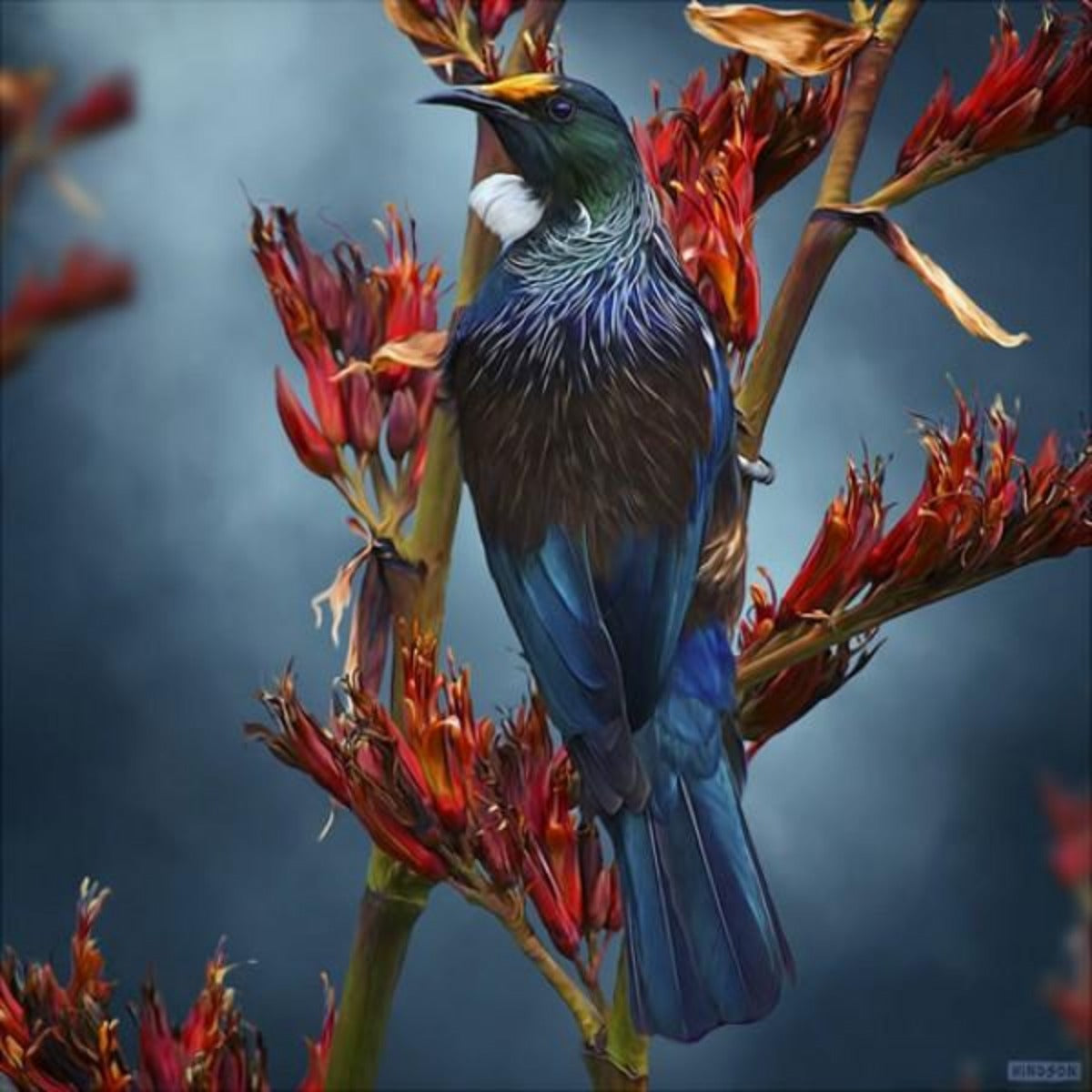 jade kiwi kaikoura gifts native tui canvas art