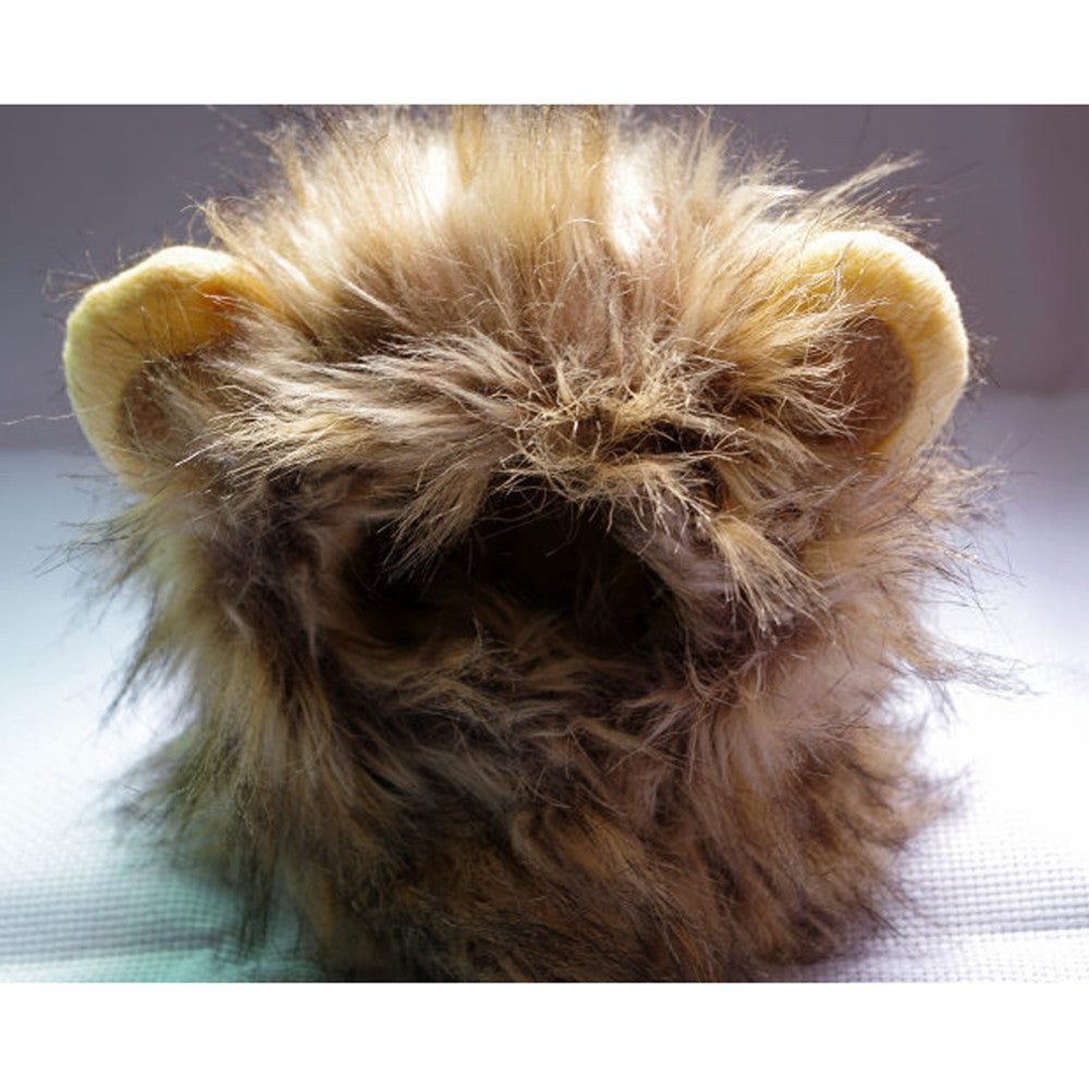 Cute Costume Lion Mane for Cat - Black Paw Store