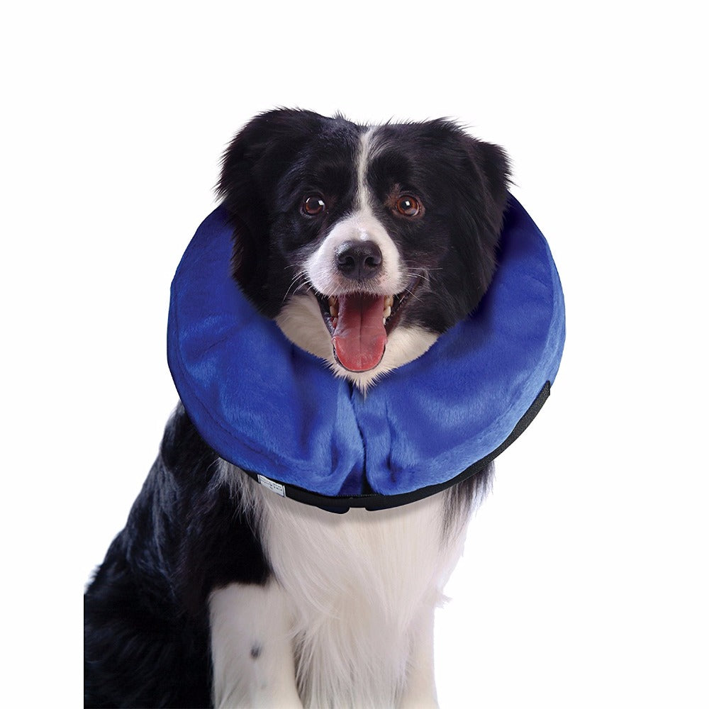 Inflatable Dog / Cat Collar Recovery Wound - Black Paw Store