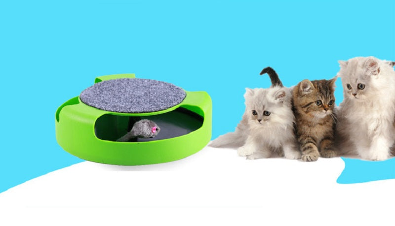 Cat/Kitten Toys with Moving Mouse Inside - Black Paw Store