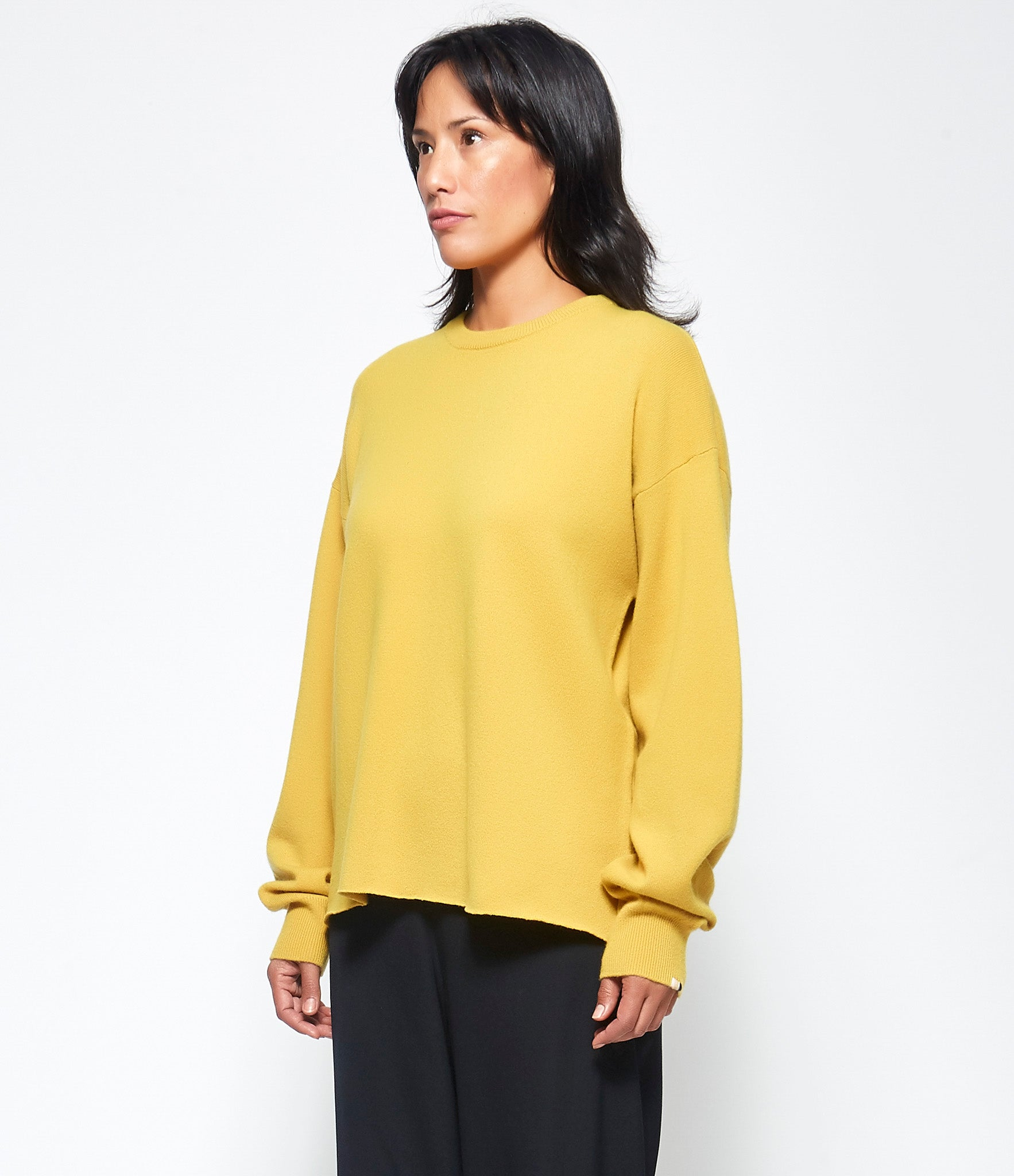Extreme Cashmere X n°115 Host Sweater