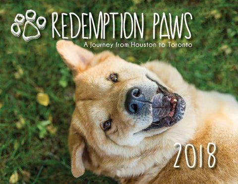 Redemption Paws Calendar - Hurricane Harvey Dogs
