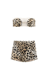 Leopard Paws Hot Pants