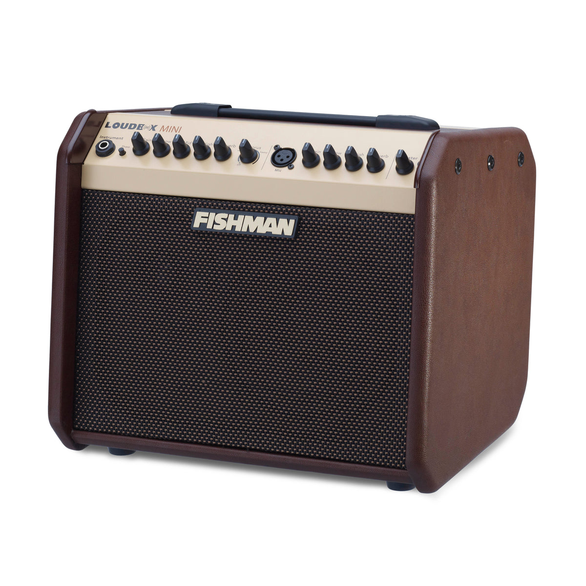 Fishman Loudbox Mini Acoustic Combo Amp