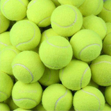24 Pack of Tennis Balls Get a bulk buy bargain Contains 24 high quality, durable sport tennis ballsyellow toys toy throws Throwing throw Tennis Sportswear sports sport sets set pets pet owner pet packs pack of match games game fun dogs dog bouncing Bounce Ball's ball 24