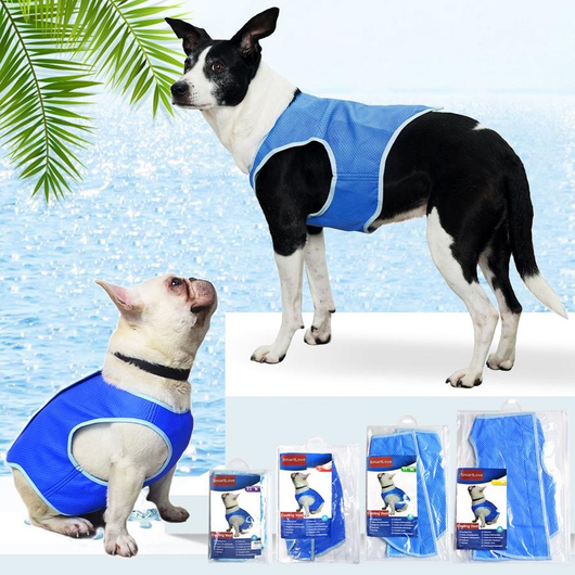 Dog Cooling Vest Keep your four legged friends happy and cool wet Weatherproof weather water vets vet vests vest travel spring sea sand pug poodle pooch play pets pet health legged Labradors hotter Home Heat four fit fabric evaporation dogs dog Damp cools Cooling Cooler cool down comfortable collie Chilling chill chihuahua breathable