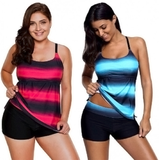 Two-Piece Blurred Stripe Tankini