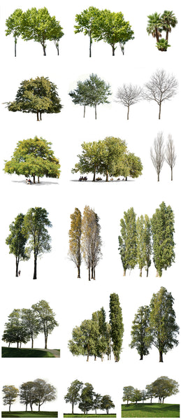 18 TREE GROUPS PACK - cutout trees