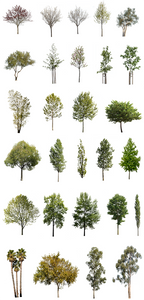 28 DIVERSE TREES PACK - cutout trees