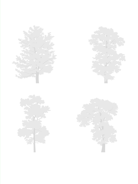I.I. DWG Vectorial Trees - Large Trees Pack - cutout trees