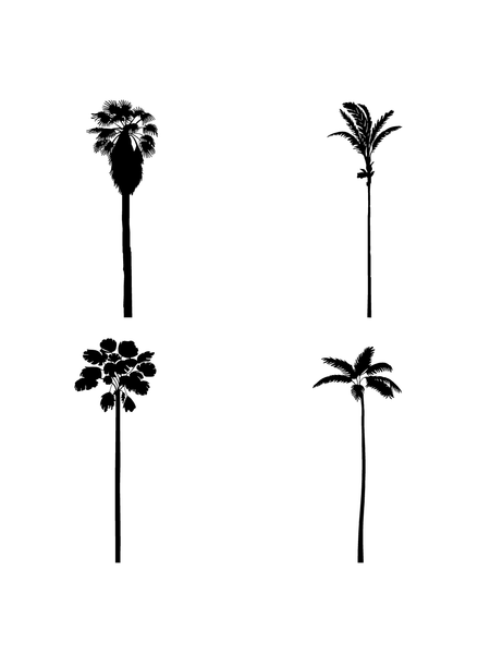 I.V. DWG Vectorial Trees - Palm Trees Pack - cutout trees