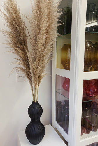 Natural Pampas in Black Ceramic Vase LOCAL DELIVERY ONLY