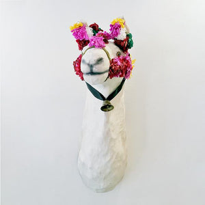 Bella the Llama Mount