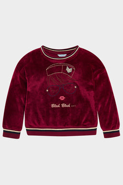 velvet sweatshirt with blah blah embroidery