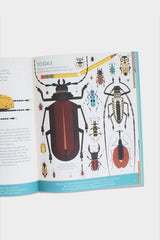 beetles illustrated children's book
