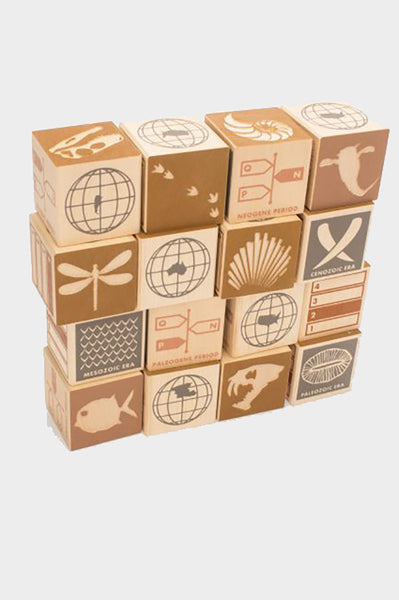 uncle goose wooden blocks, fossils