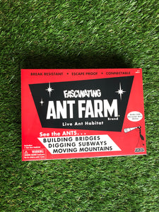 Retro Ant Farm