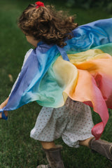 sarah's silks silk rainbow wings