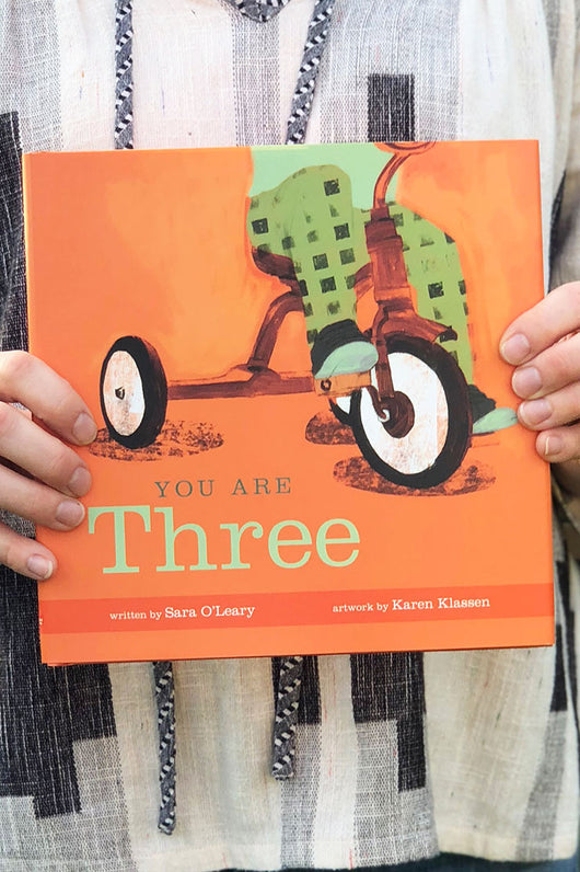 you are three toddler book