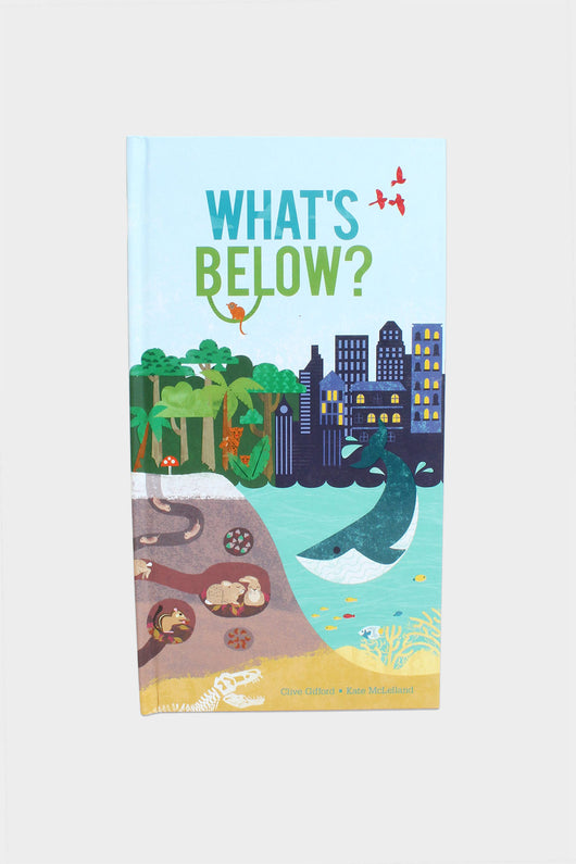 what's below book