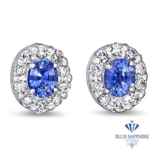 0.77ctw Oval Blue Sapphire Earrings with diamond halo in 14K White Gold