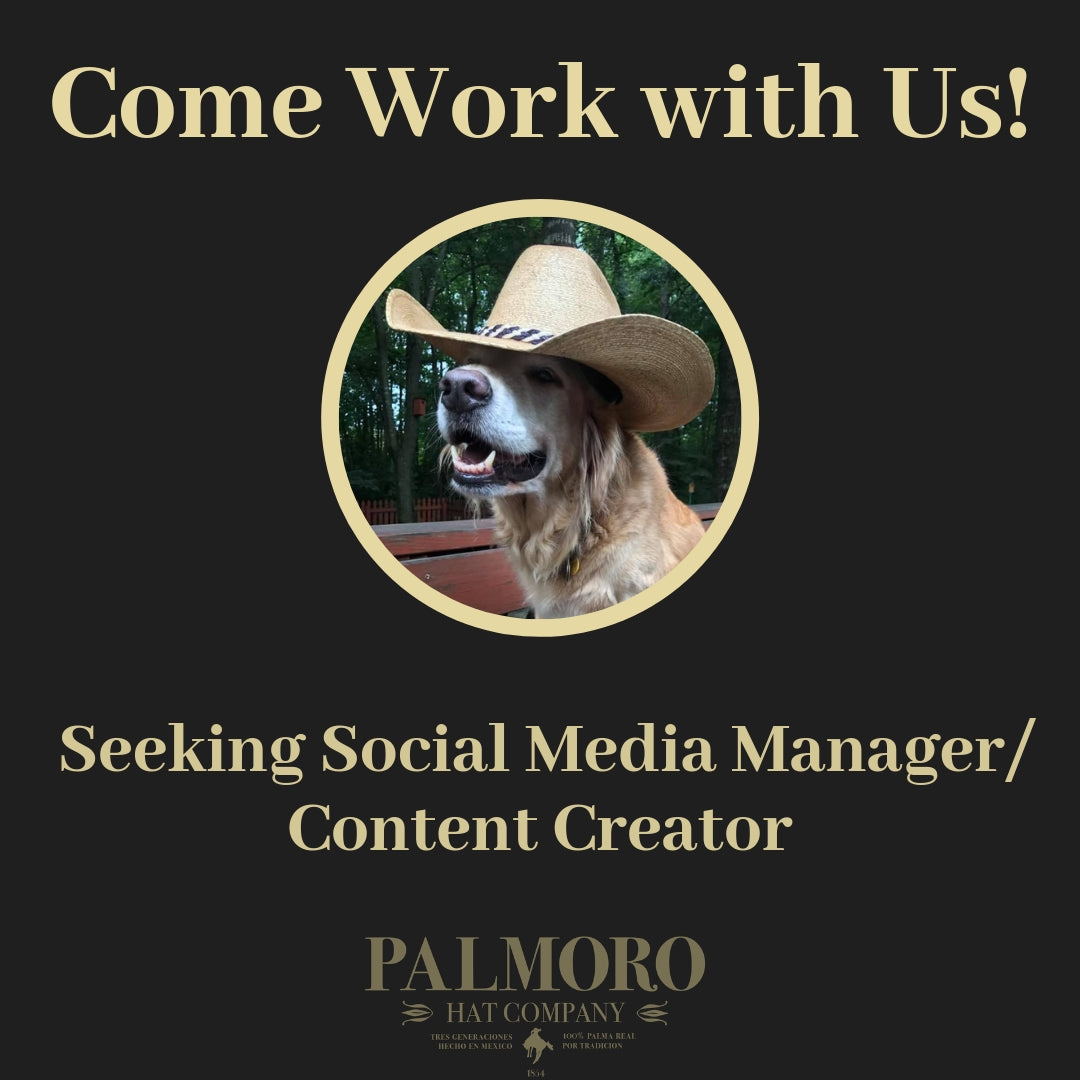 Come Work with Palmoro USA!