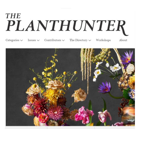The Planthunter - Embellish