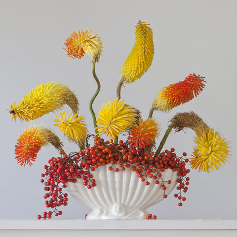 Red Hot Pokers and Berries