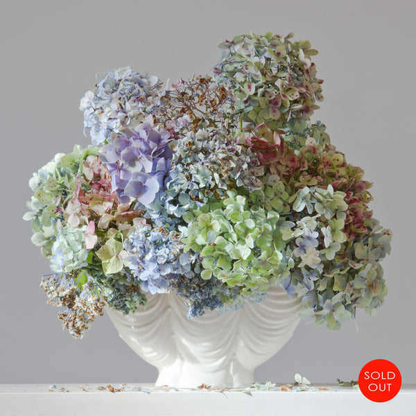 Hydrangeas 9.34 am (sold out)