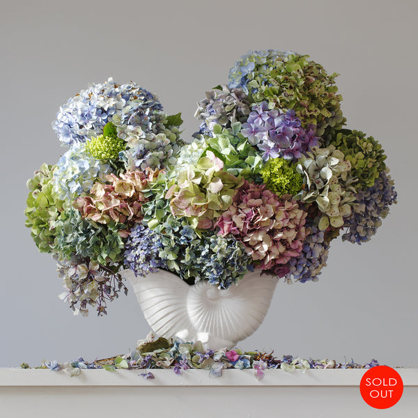 Hydrangeas 8.50 am  (sold out)