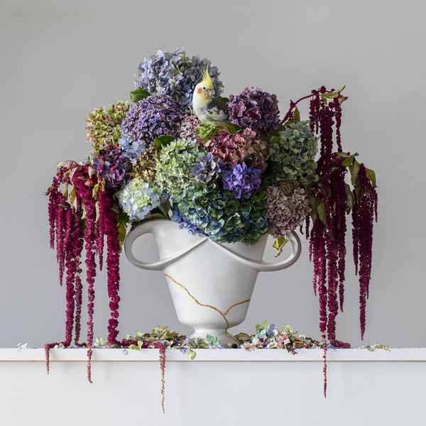 Hydrangeas & Love Lies Bleeding 1.12pm