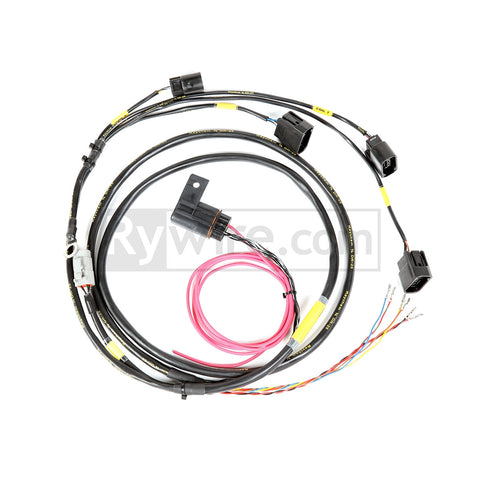 Rywire Coil-On-Plug Harness