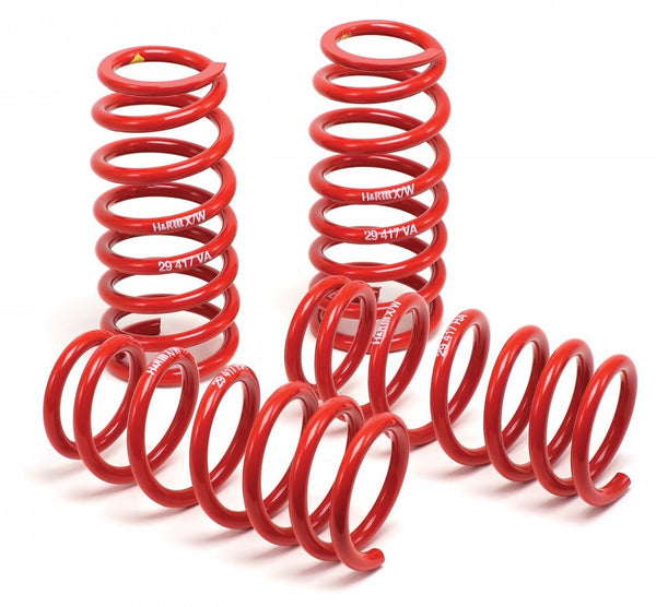 H&R Race Lowering Springs