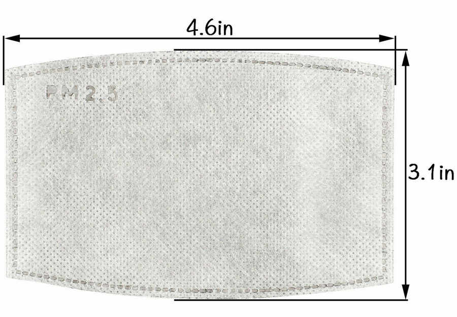 Pair of PM2.5 Mask Filters Domestic Ship