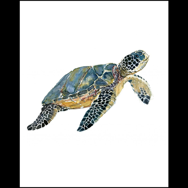Turtle(Wall Clings)