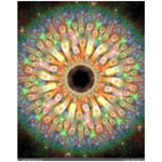 Kaleidoscope Beauty(Wall Cling)