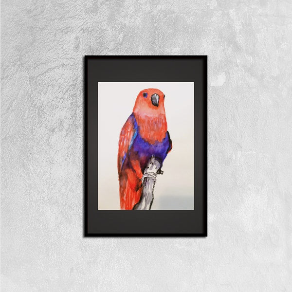 Framed Canvas Prints(Red Parrot) - JenniPaintings-FoundTreasures