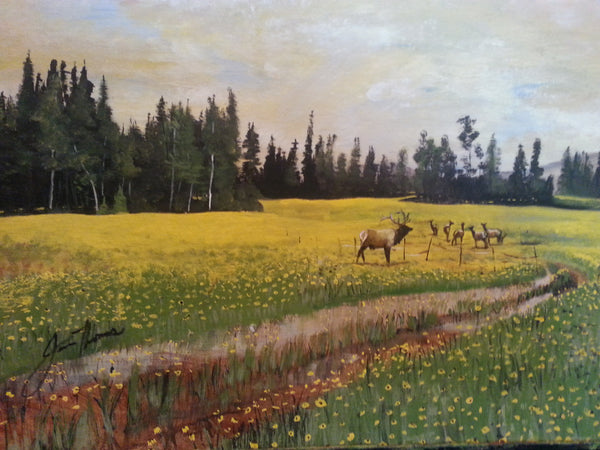 Yellow Meadow - JenniPaintings