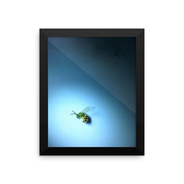 Framed poster Print(From the hive)