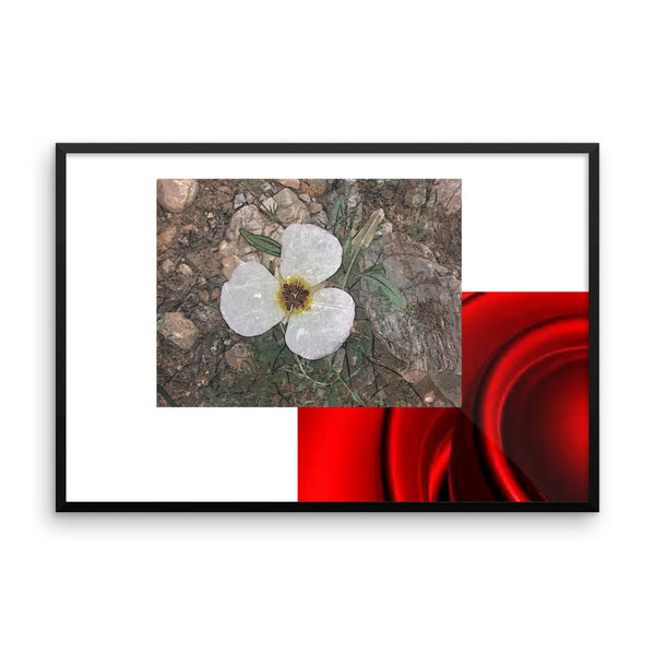 Framed poster(Reds, Whites and desert flowers)