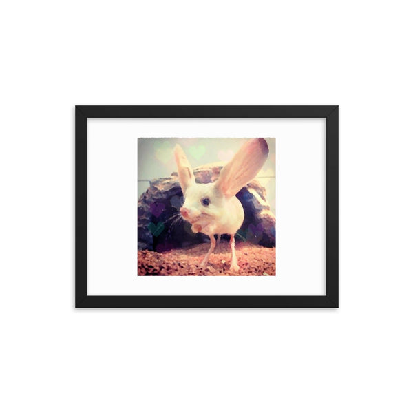 HareRat(Framed photo paper poster Print)