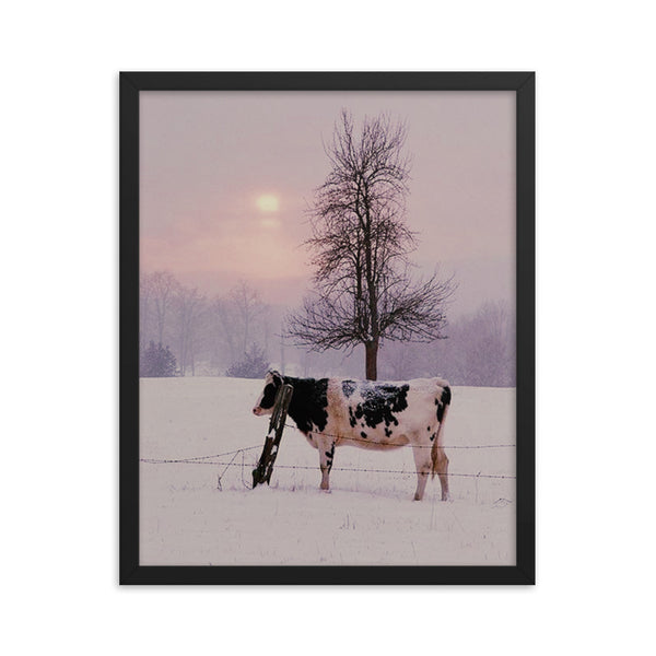 Milk Cow(Framed poster print)
