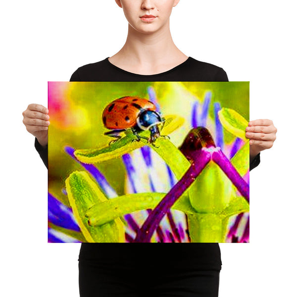 Amazing colorful Print on canvas
