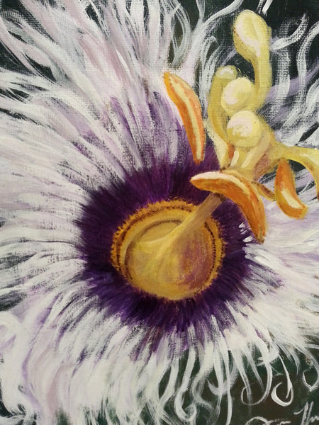 White Passion Fruit Flower - JenniPaintings
