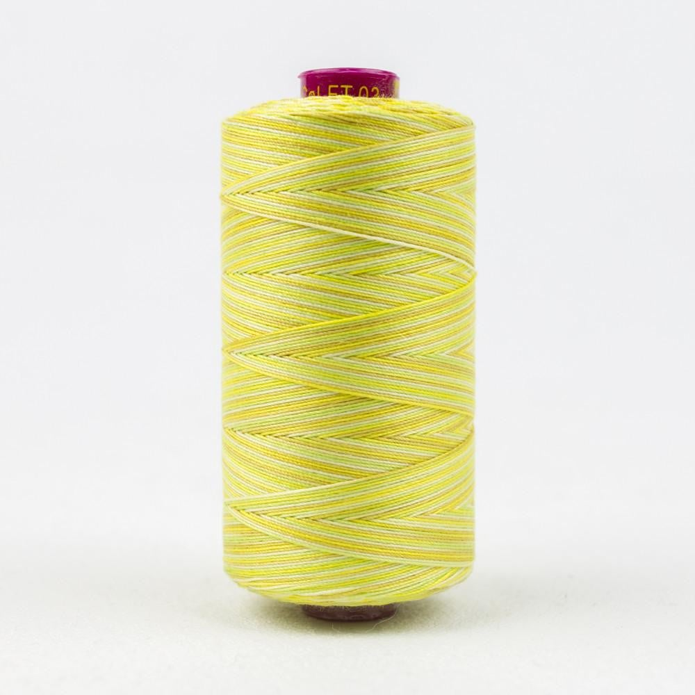 FT03 - Fruitti 12wt Egyptian Cotton Citrus Thread - wonderfil-online-eu