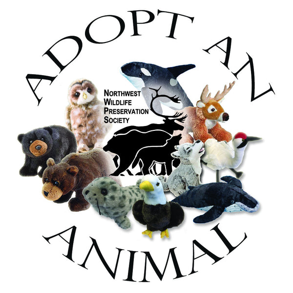 Orca - Animal Adoption Kit