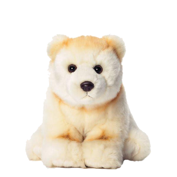 Spirit Bear - Animal Adoption Kit