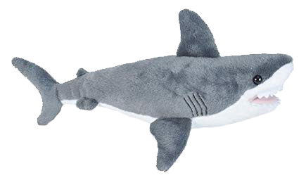 Great White Shark - Animal Adoption Kit