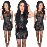 """Topshot"" Sheer insert mini Glitter bodycon dress - Iconic Trendz Boutique"